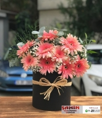 Kutuda Çiçekler - 03