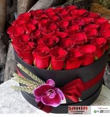 Kutuda Çiçekler - 02