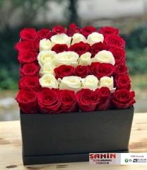Kutuda Çiçekler - 04