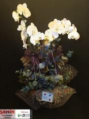 Orkide - 22