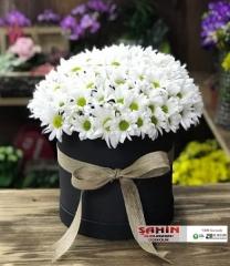 Kutuda Çiçekler - 05