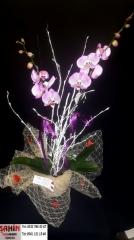 Orkide - 20